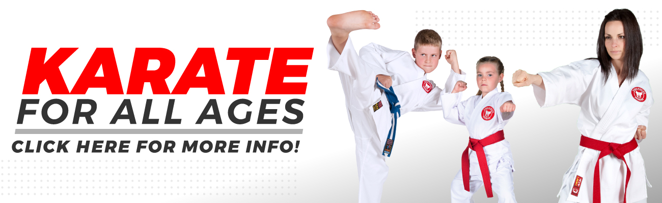 banner Karate for Everyone